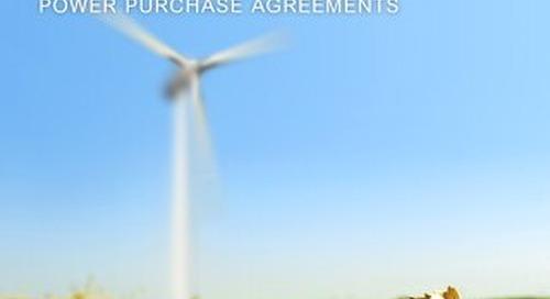 Economic Case for Renewable Energy - Whitepaper (Queens)