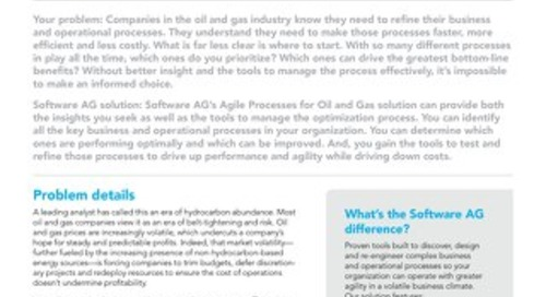 AGILE PROCESSES FOR OIL AND GAS
