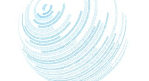 NAEM Software Implementation Report