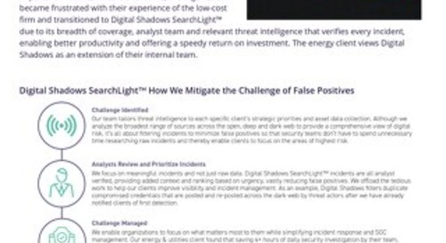 Energy & Utilities Firm Increases Productivity by Reducing False Positives