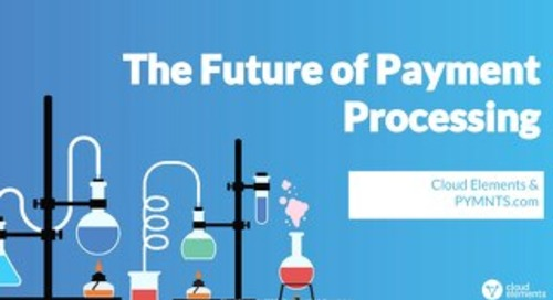 The Future of Payment Processing | Webinar Slides