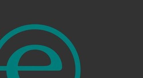 Endeavor Detroit Impact Report Volume 1 (2015–17)
