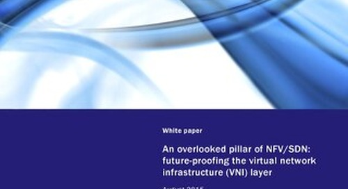 Analysys Mason - An Overlooked Pillar of NFVSDN - Future-Proofing the VNI Layer