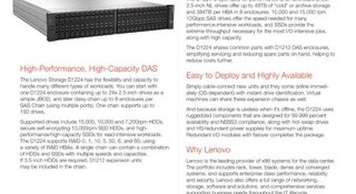 Lenovo Storage D1224