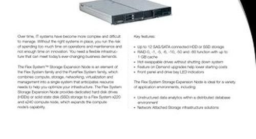 Flex System Storage Expansion Node