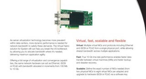 Emulex 10 GbE Virtual Fabric Adapter II and III Family