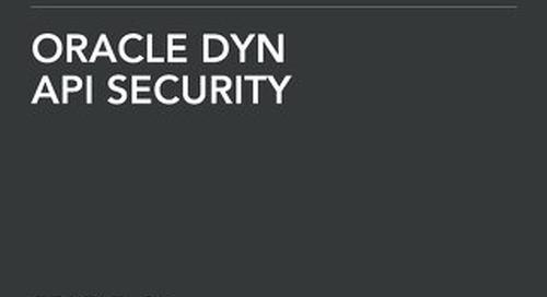 Solution Brief: API Security