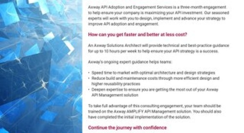 API Adoption and Engagement Services