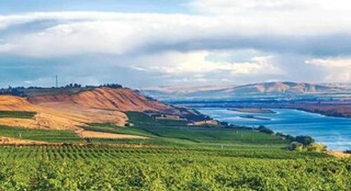 Signature Wines & Wineries of Washington (Walla Walla Chapter)