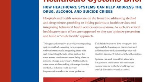 Pain in the Nation: Healthcare Systems Brief