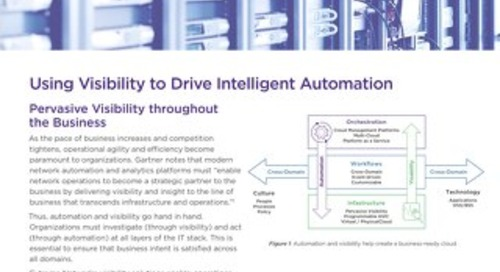 Using Visibility to Drive Intelligent Automation