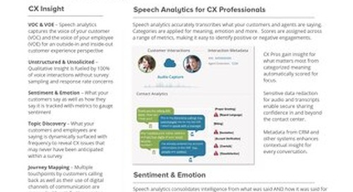 Customer Experience & Voice of the Customer Datasheet