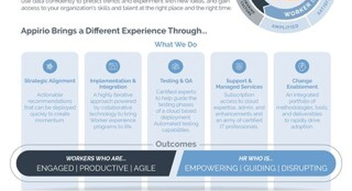 Appirio's Workday Practice At-A-Glance