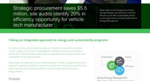 Energy Strategy at Industrial Manufacturer