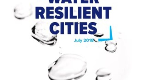 Water Resilient Cities Report July 2018