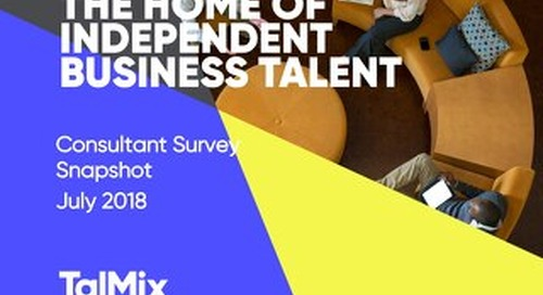Talmix Consultant Survey Results: Summer 2018