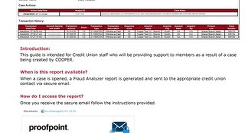 COOPER Fraud Analyzer Reference Guide