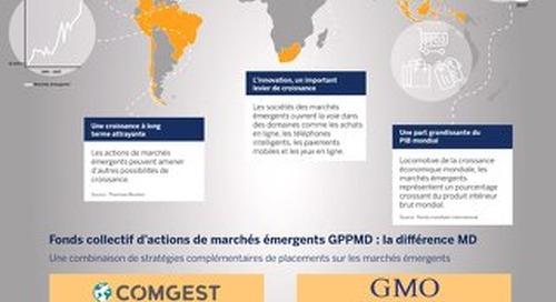 Pourquoi diversifier ses placements avec des actions de marchés émergents