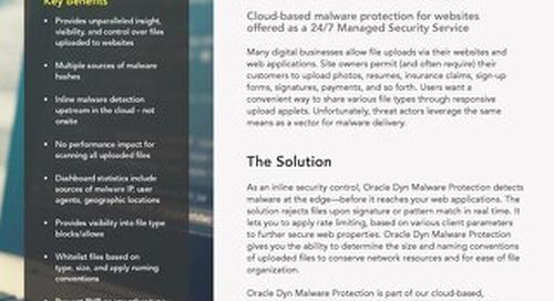 Malware Protection Executive Summary