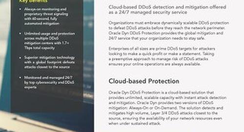 DDoS Executive Summary