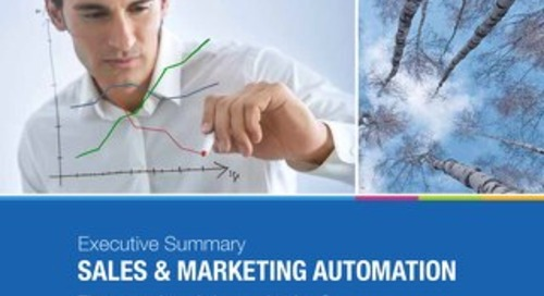 Executive Summary: Sales and Marketing Automation