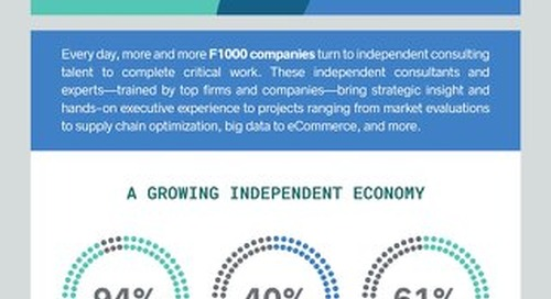 The Independent Consulting Economy 2017 - Full