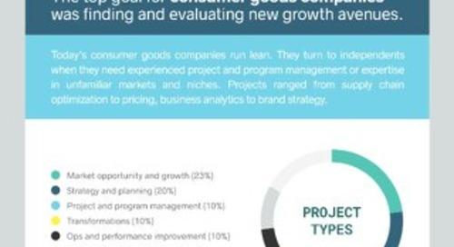 The Independent Consulting Economy 2017 - Spotlight on Consumer Goods