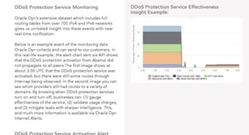 DDoS Protection Service Monitoring Data Sheet