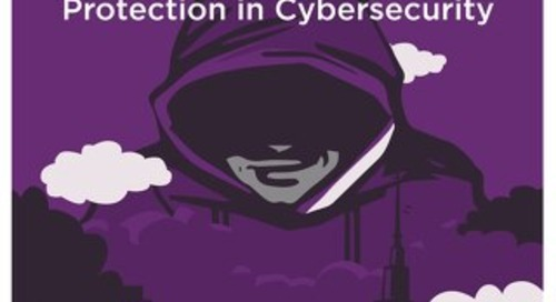 Software Protection in Cybersecurity