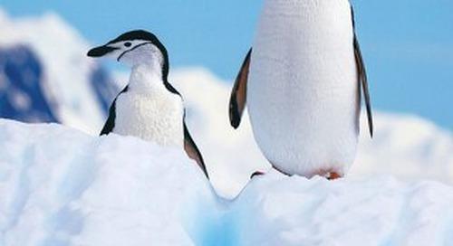 Quark Expeditions Antarctica 2019.20