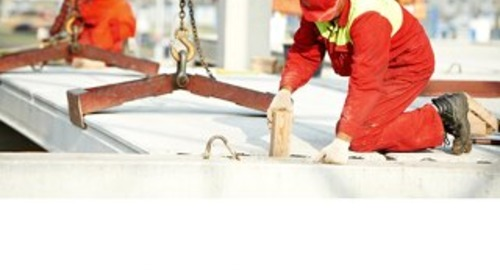 Reducing Project Risks: Transferring Success
