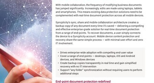 End-Point Document Protection For a Mobile World