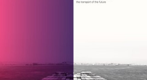 DWF_Transport Survey