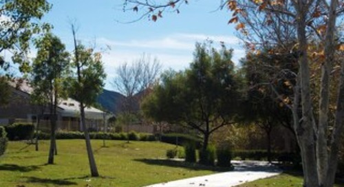 Solera Diamond Valley November 2018