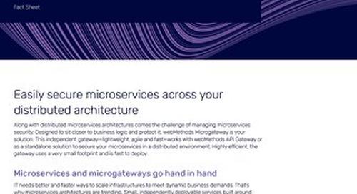 Facts about webMethods Microgateway