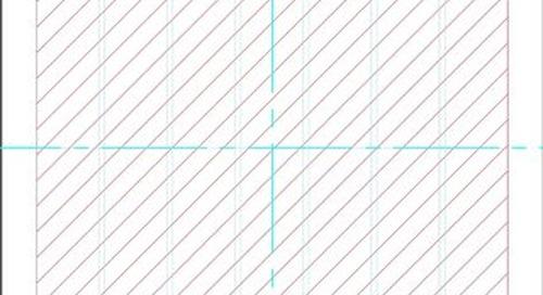 Palindrome Precision IFU