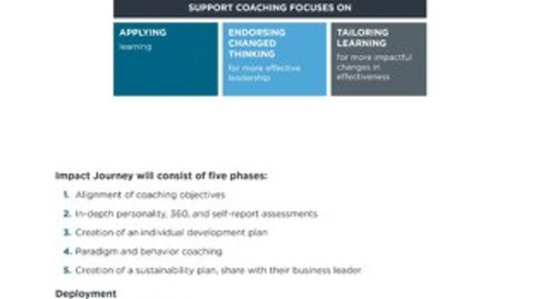 Coaching Journey Infographic