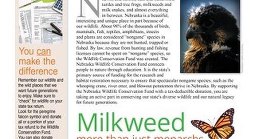 2019 Wildlife Newsletter