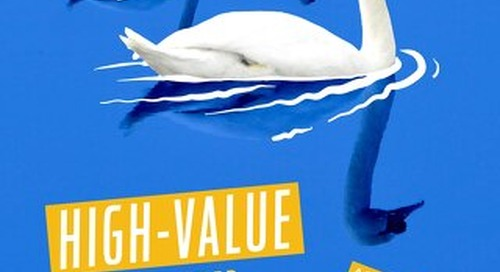 High-Value Customer Acquisition on Facebook