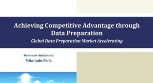 Achieving Competitive Advantage Through Data Preparation