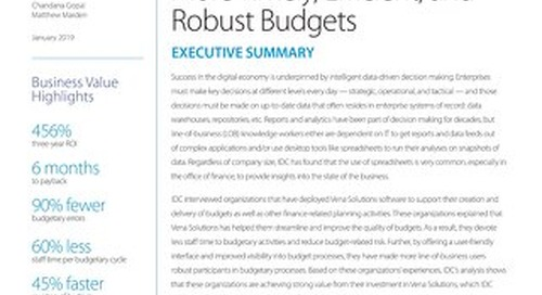 IDC: Vena Budgeting ROI Report - Executive Summary