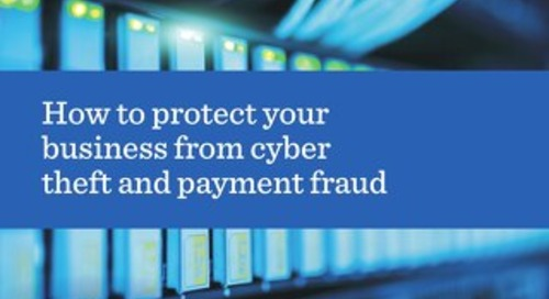 How to protect your business from cyber theft and payment fraud