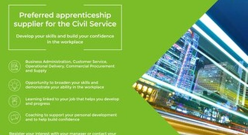A3 Posters for Learners - Civil Service