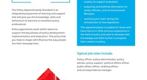 Policy Officer Level 4 Overview