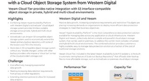 Effectively Scale Your Veeam Repository with Object Storage