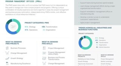 Program Management Office (PMO) Trends - The 2019 High-End Independent Talent Report