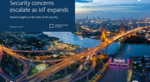 Security concerns escalate as IoT expands