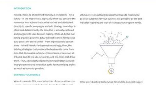 Does a Profit Maximization Strategy Make Sense For Your PPC Bidding Optimization? [Pains Series Doc]