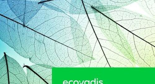 Toward Sustainable Public Procurement: EcoVadis Handbook