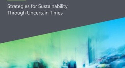 Four Strategies For Sustainability